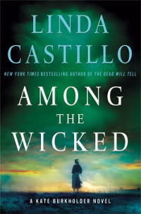 Among the Wicked cover